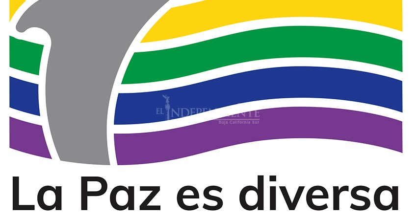 """Diputada debió asesorarse antes de enviar iniciativa contra """"terapias"""" de corrección: La Paz Es Diversa"""
