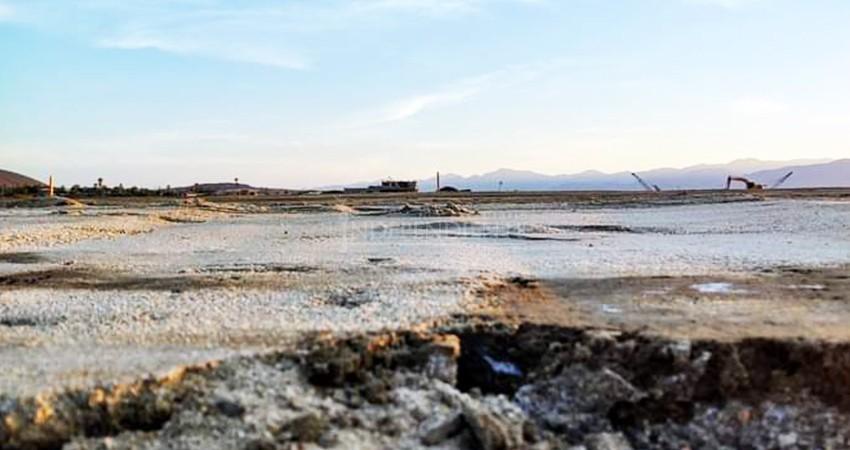 Devastadas las áreas de anidación de tortugas y gallito marino en La Ribera