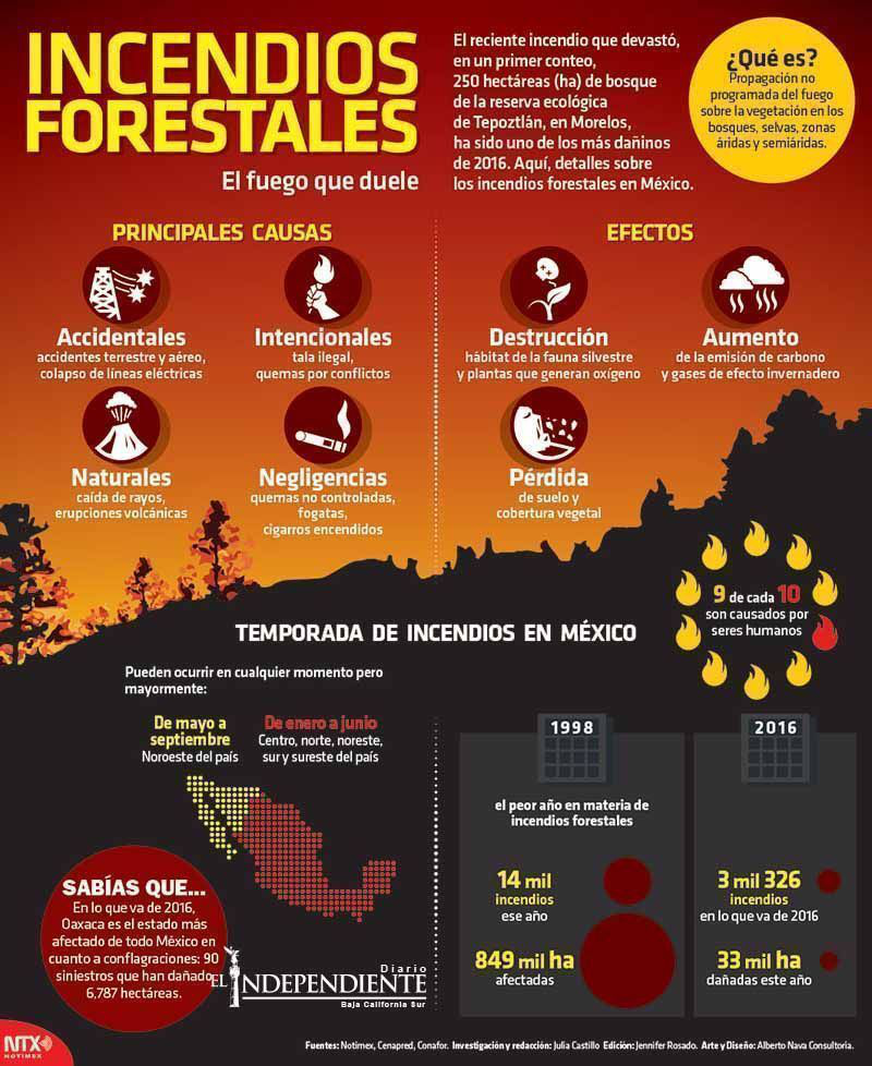 Incendiso forestales copia