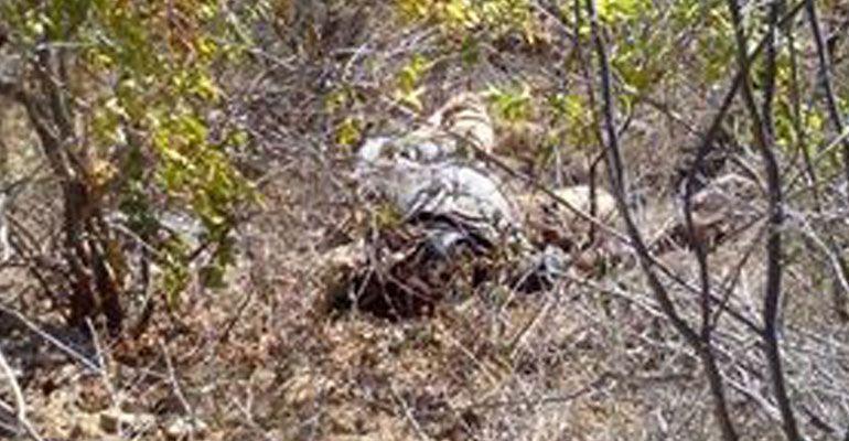 ¡Fue asesinado!; cuerpo encontrado en San Antonio fue liquidado de un disparo en la cabeza
