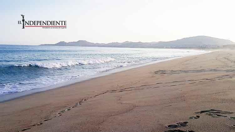 Desconoce ZOFEMAT que en Los Cabos existan playas cerradas
