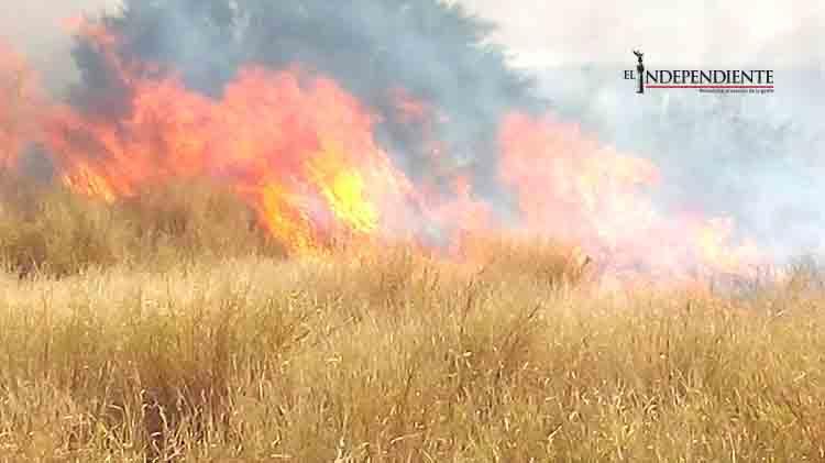 Incendios de pastizales y volcaduras en carretera: recuento de la tarde de ayer