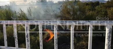 Vuelve a arder en llamas parte del Estero Josefino