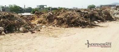 Denuncian vecinos que el arroyo cercano a la colonia Valle del Cabo está siendo rellenado con basura