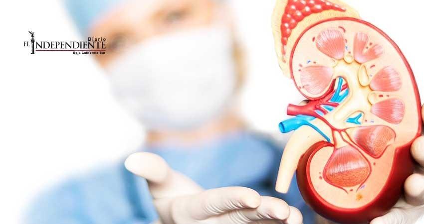 Proporciona IMSS de BCS tratamientos a pacientes con trasplante de riñón
