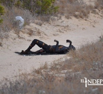 Encuentran una persona calcinada en Guerrero Negro