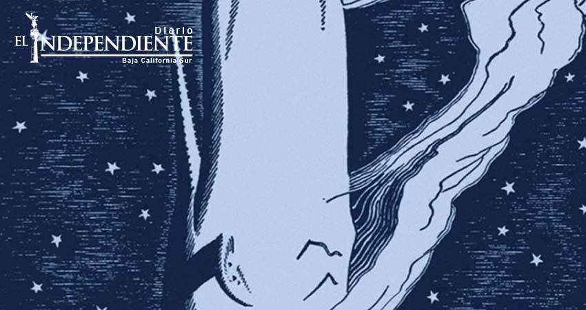 A 198 años del nacimiento del autor de 'Moby Dick'