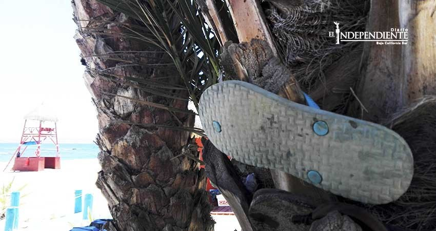 Playa Palmilla, un día después de la tragedia