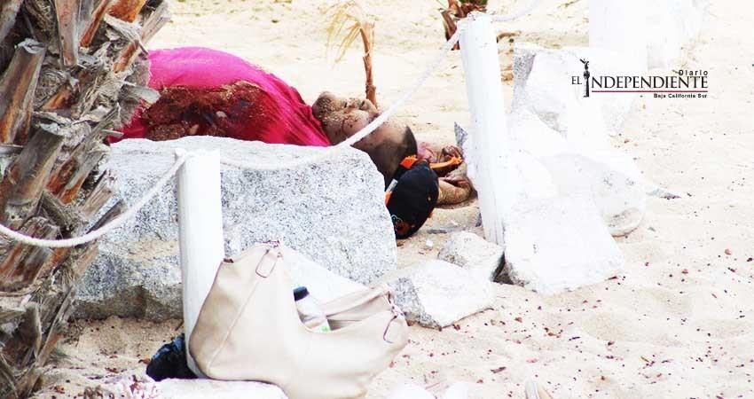 Autoridades deben planear nuevas estrategias para la seguridad de Los Cabos