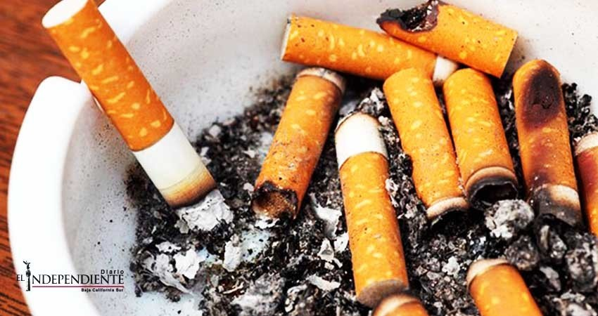 """Presumen a Baja California Sur (BCS) como uno de los 11 estados """"libres de humo de tabaco"""""""