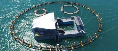 Listas instalaciones marítimas del santuario de la vaquita marina