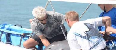Rescatan a primera vaquita marina