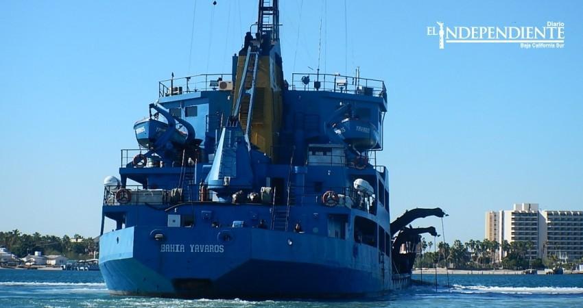 """Avala Profepa dragado en la bahía de La Paz, """"no hay varamientos de tortugas"""" afirman"""