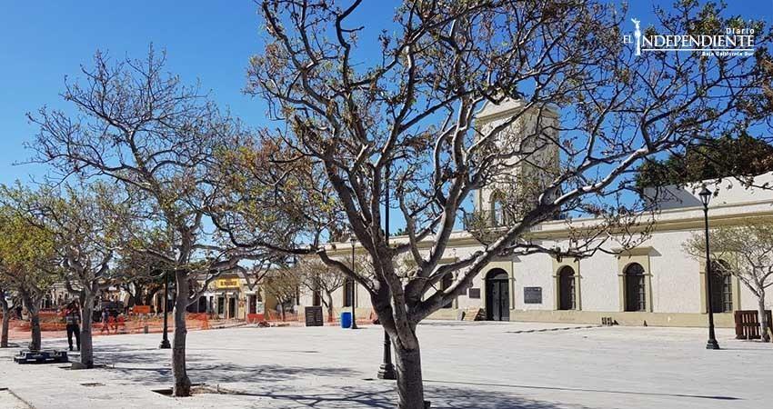 Acuerdan cambios en el paisaje arbolado de remodelación de plaza cívica de SJC