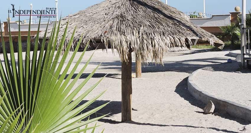 Verificó Coepris 26 playas de BCS; mancha en playas del sur es parte de la propia naturaleza