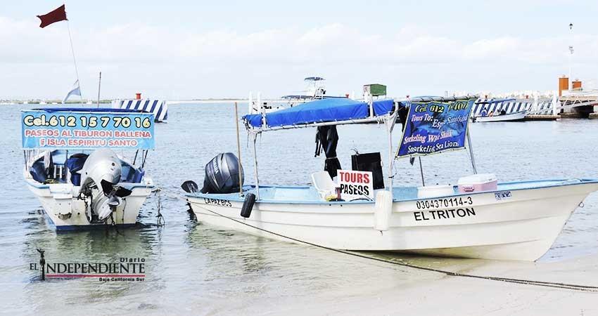 Requisitos de Semarnat dificultan viajes con Tiburón Ballena, denuncian prestadores de servicios