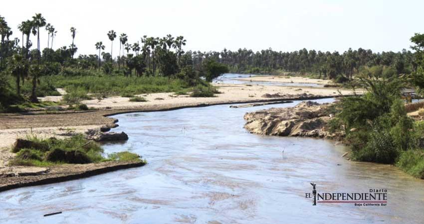 Cuerpo de agua del Estero San José se encuentra en etapa de recuperación