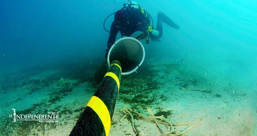 En enero se publicarán bases para licitar construcción de cable submarino para BCS
