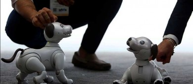Sony relanza al adorable Aibo, la mascota robot