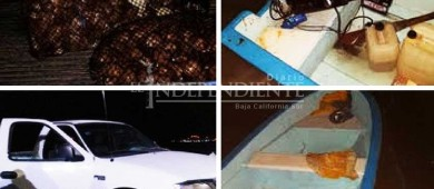 Decomisan inspectores de Conapesca 330 kilos de almeja extraída ilegalmente