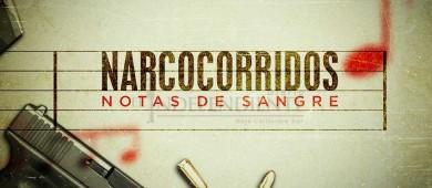 Prohibidos narcocorridos en Fiestas Tradicionales de San José del Cabo 2018