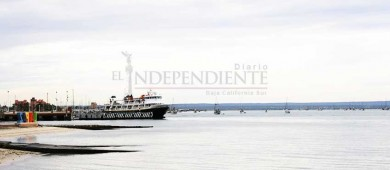 Dragado en Bahía de La Paz no ha causado muerte de fauna marina: ONG