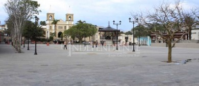 A finales de febrero llegarán los árboles que adornarán la Plaza Mijares de SJC