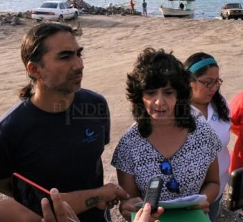 Denuncian ambientalistas reinicio de dragado en la Bahía de La Paz