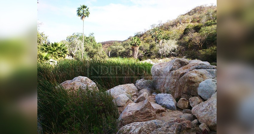Se pierden dos jóvenes en la Sierra de la Laguna