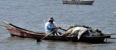 Ley de Biodiversidad es dañina para todo México, no solo para la pesca: Conmecoop