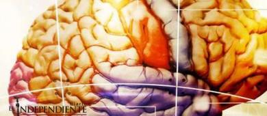 Investigadores prueban que el cerebro aprende a buscar placer