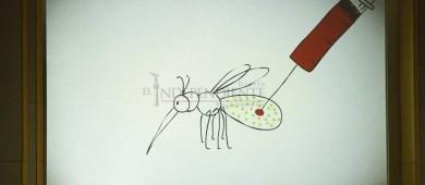 Será BCS primera entidad en probar mosquitos modificados contra enfermedades