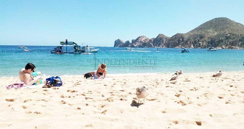 Secretaría de Marina capacita a guardavidas de playas de Cabo San Lucas