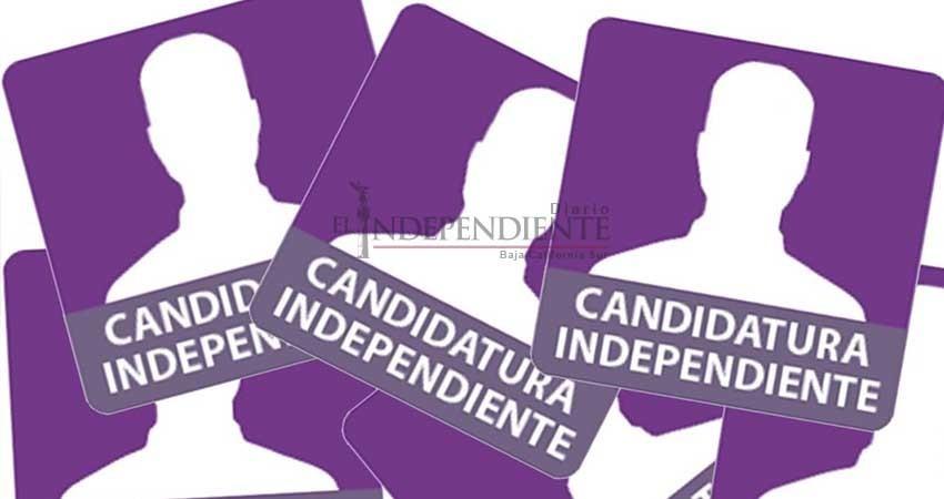 Valida INE apoyo ciudadano a seis independientes
