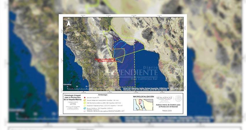 Amplía Semarnat área de refugio de la vaquita marina en Golfo de California