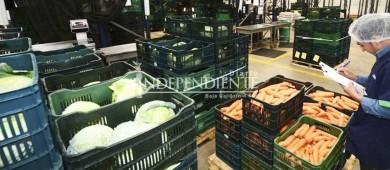 BCS tiene suficiencia alimentaria de 30 días, en caso de huracán: Segob