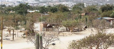 Se debe dar un buen destino a las tierras expropiadas pide Consejo Coordinador de Los Cabos