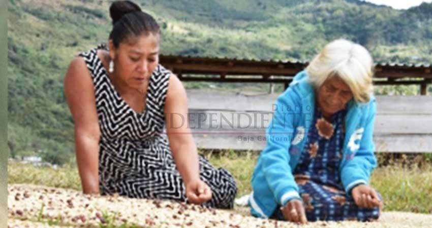 Indígena zapoteca gana concurso de fotografía