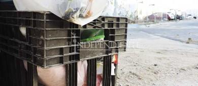 """Reanuda Servicios Públicos recolección de basura tras el paso de """"Bud"""""""