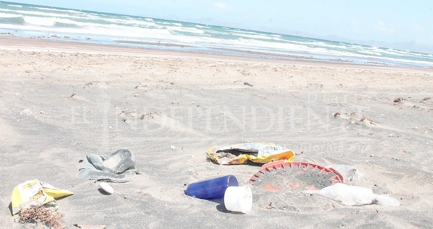 Coepris BCS exhorta a campistas a no contaminar las playas