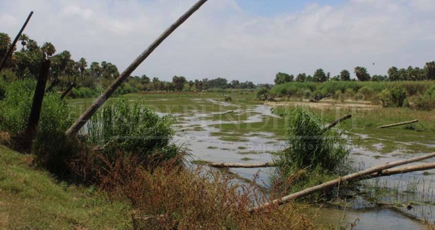 El Estero sí está contaminado por derrames de aguas negras, confirma Coepris BCS