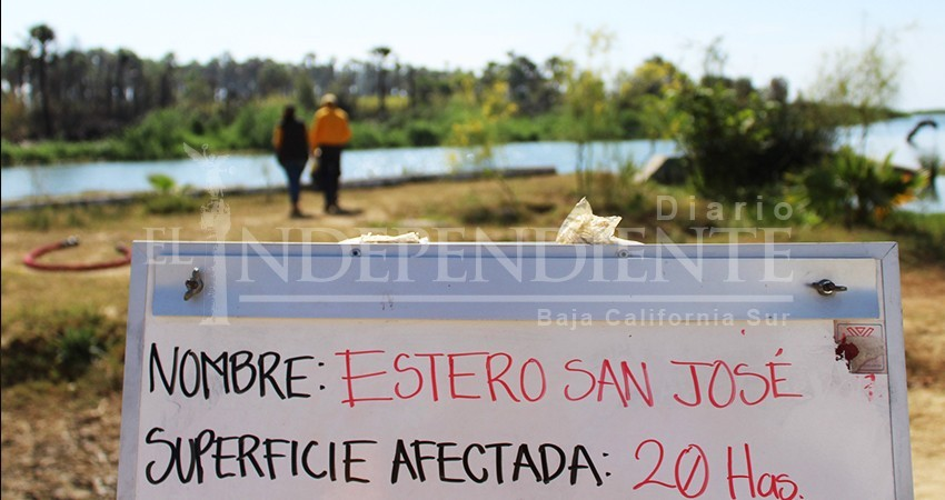Regidores explican su postura por votar en contra de la urgente rescate del Estero