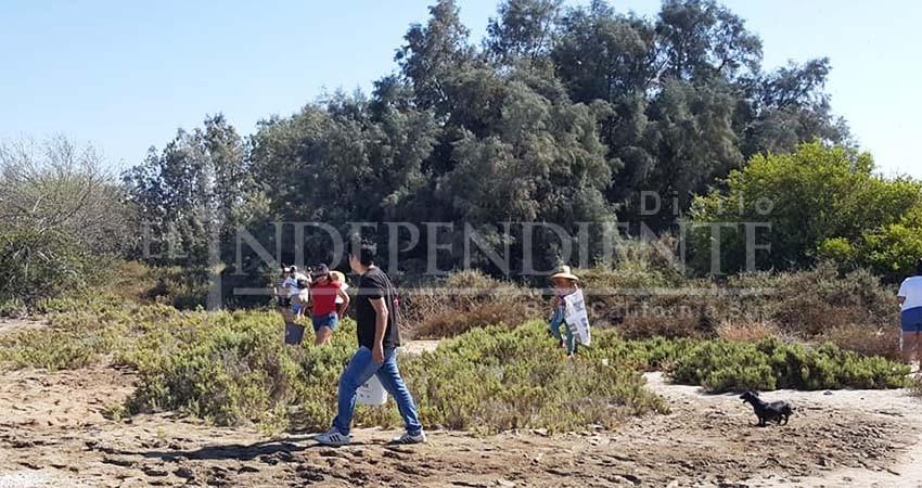 """Limpieza de """"Mar Libre"""" en mangles de La Paz, recolectó 1.2 toneladas de basura"""