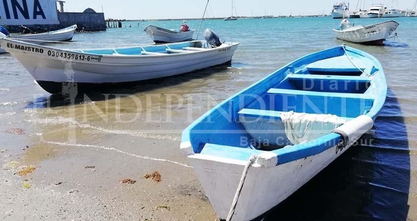 Pescadores de BCS con dificultades para obtener permisos de CONAPESCA