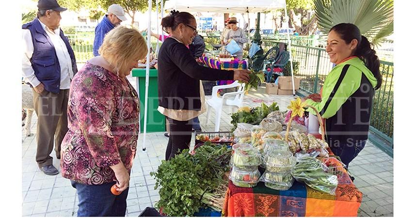 Prevé el Ayuntamiento de La Paz reubicar Mercado Orgánico