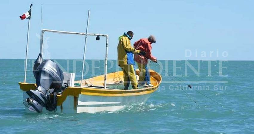 Preocupa a SEPADA el tema de vigilancia pesquera; federación olvida a BCS