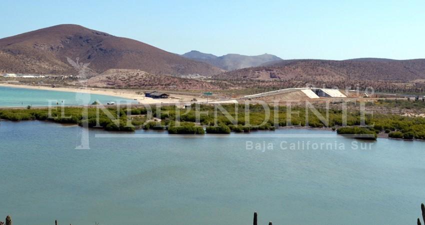 Instalarán cercos perimetrales en manglares de La Paz