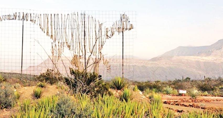 El INAH busca más ingresos; prevén cobros en zonas arqueológicas