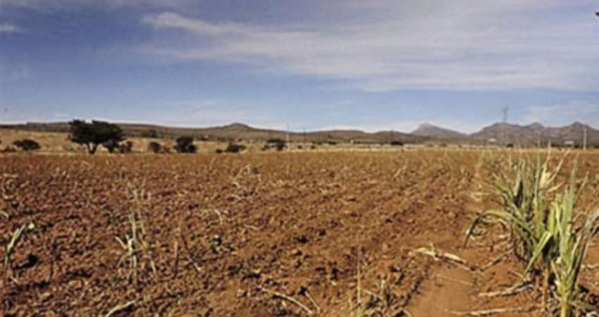 BCS podría ser el primer Estado de México en llegar al Día Cero de agua