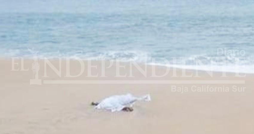 Arroja el mar el cuerpo de un hombre en SJC